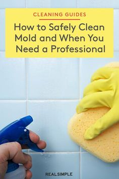 How to Clean Mold (And When to Call in the Pros) | Cleaning experts share how to identify if mold is growing in your home, how to clean mold the correct way, so it stays away, and the common signs you need to call a professional to get rid of any dangerous mold growing in your home. See the full mold cleaning guide along with other cleaning hacks everyone should know. #cleaningtips #cleanhouse #realsimple #stepbystepcleaning #cleaninghacks #cleaningguide Mold Allergy, Mold Prevention, Porous Materials, Organization Hacks, Organizing, Dish Detergent, Grout Cleaner, Peeling Paint, Laundry Hacks