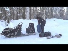 Watch Dallas Seavey as he packs his dog sled for the 2013 Iditarod.