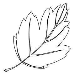 une feuille darbre - Dessin De Feuille