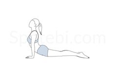 The upward facing dog pose opens the heart, chest and lungs, improves posture and stretches the front of your body and your upper back. It also strengthens the arms, shoulders and spine, and stimulates the abdominal organs. http://www.spotebi.com/exercise-guide/upward-facing-dog-pose/