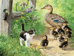 Duck Inspector by Persis Clayton Weirs ~ ducklings kitten spring