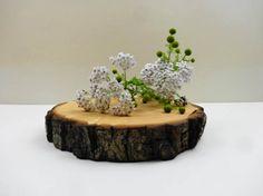 7.58 Wood Slice Wood Cake Stand Nature Decor