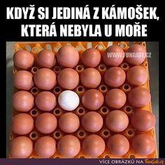 Funny Facts, Funny Memes, Jokes, Carpe Diem, Haha, Funny Pictures, Drawing, Funny Humor Pictures, Funny Humor