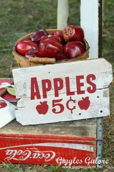DIY Vintage Apple Picking Sign and Bucket of Apples as props Apple Farm, Apple Orchard, Equestria Girls, Apple Kitchen Decor, Apple Decorations For Kitchen, Apple Season, Apple Harvest, Apple Theme, Apple Valley