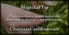 Magickal Tip - Place blueberry leaves under the doorstep or doormat for protection.