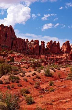 Red Desert, Arches National Park, Utah