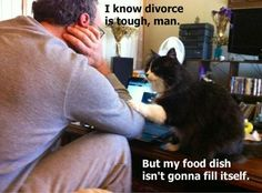 I know divorce is tough, man. But my food dish isn't gonna fill itself.    Frontier.com