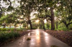 A Rainy Day in Forsyth Park. HDR Photography in Savannah