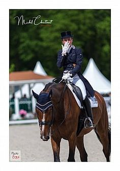 Helen LangehanenBerg ( GER) & Suppenkasper Dressage, Equestrian, Horses, Sports, Pictures, Animals, Hs Sports, Photos, Animales