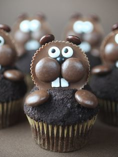 I made some cute chocolate cupcakes for you today. But because the cupcakes were mini, I was able to use chocolate chips to d Tolle Cupcakes, Cute Cupcakes, Cupcake Cookies, Lion Cupcakes, Cupcake Cupcake, Ladybug Cupcakes, Kitty Cupcakes, Muffin Cupcake, Snowman Cupcakes