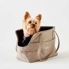 Monogrammed + Personalized Bags, Accessories + Gifts | Mark and Graham Dog Carrier Purse, Dog Purse, Dog Tote Bag, Pet Bag, Tote Bags, Dog Car Booster Seat, Gifts For Dog Owners, Dachshund Love, Outdoor Dog