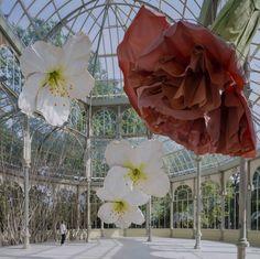 Petrit Halilaj Turns Reina Sofia's Palacio de Cristal in Madrid into a Nest Filled with Giant Flowers.