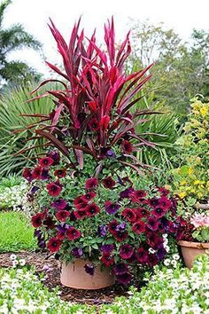 Love red? Then check out this gorgeous container garden that incorporated varying heights of red flowers and plants. #gardening #red #Containerflowers #containergarden