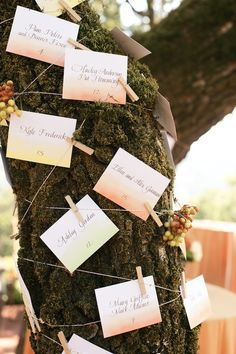 Escort cards strung on a moss filled tree.  Calligraphy from #PapineauCalligraphy, Photo: Simply Jessie