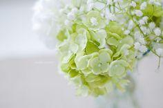 a flower arrangement with green hydrageas