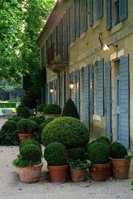 On deck in front of Large window.. awesome statement of clay pots and everygreen topiary... a lovely change from annuals in your planters...