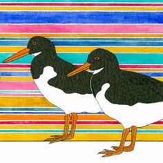 """Close-up detail from an original watercolour """"Three Oystercatchers"""" by Cathy Connolley, available from Caitlihne on Etsy. http://www.cathyconnolley.com/"""