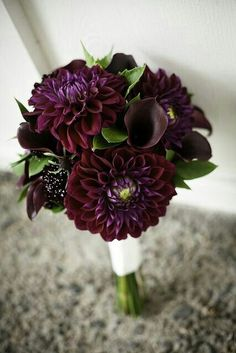 Merlot Dahlias, Purple Mini Callas, Berries, Foliage....