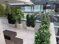 Patio, Outdoor Decor, Plants, Home Decor, Environment, Planting, Backyard Patio, Decorating Ideas, Good Ideas