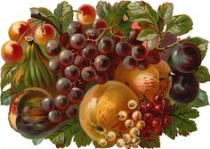 http://wordplay.hubpages.com/hub/vintage-victorian-flowers-and-fruit
