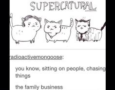 Supercatural