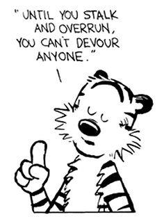 """Calvin and Hobbes QUOTE OF THE DAY (DA): Hobbes """"Until you can stalk and overrun, you can't devour anyone."""" 