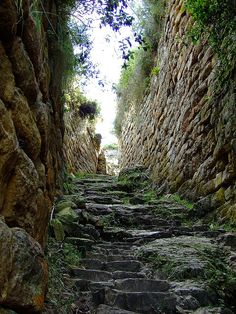 ~Entrance to Kuelap, the great fortress of the chachapoyas, Peru~