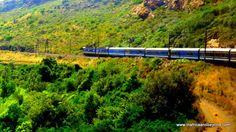 The Blue Train in South Africa - who doesn't love train travel? #train #trains