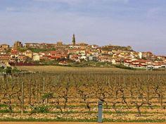 El pueblo de Briones al fondo de los campos de viñedos (La Rioja)