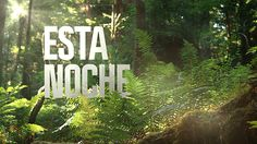 Discovery Channel Latam Rebrand on Behance