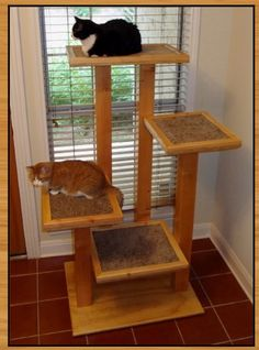 Amazing cat tree from www.thecatcarpenter.com/
