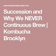 Succession and Why We NEVER Continuous Brew   Kombucha Brooklyn