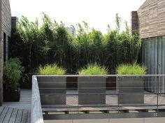 Parce qu'on aime être tranquille chez soi, même dans son jardin (ou sur sa terrasse), il est important de se protéger du vis-à-vis. Clôture en bois, mur végétal, voilages, une multitude de solutions existe pour vous cacher de vos voisins sans pour autant lésiner sur le style. Vous en doutez ...