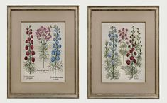 Attention to detail makes our fine framing stand above the rest, with framing to suit every type of art and decorating style. Old Maps, Antique Maps, Antique Prints, Types Of Art, Custom Framing, Decor Styles, Decorative Boxes, Rest, Concept
