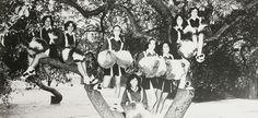 "The 1978 cheerleaders in the ""Clay Tablet"" of Claymont high school in Claymont, Delaware.  #Claymont #ClayTablet #yearbook #1978 #cheerleaders"
