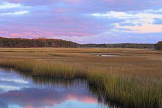 Herring River Marsh Cape Cod Autumn Sunset by John Burk Cape Cod, Abstract Landscape, Landscape Paintings, Landscape Photography, Nature Photography, Native American Quotes, Pokemon, Landscape Pictures, Walking In Nature