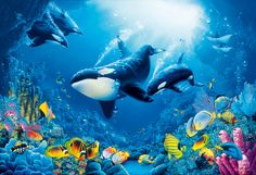 Google Image Result for http://pic.wallpapermurals.co.uk/gallery/deep-whales-mural.jpg