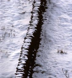 Wall in the snow, by Michael Scuffil Dry Stone, Stone Walls, Cool Photos, Snow, Pictures, Outdoor, Fall Winter, Spring, Walls