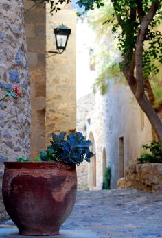 Plan your trip. Places To Travel, Places To See, Monemvasia Greece, Greek Flowers, Mediterranean Art, Tree Forest, Flowering Trees, Greece Travel, Plan Your Trip