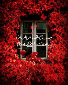 Morning Words, Good Morning Gif, Good Morning Flowers, Good Morning Greetings, Beautiful Morning, Good Morning Images, Merida, Simple Love Quotes, Evening Greetings