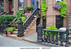 Brooklyn New York Brownstone Entrance Steps with Summer Blooming Plants