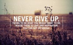 Never-give-up.-Trying-to-do-what-you-really-want-to-do.-Where-there-is-love-and-inspiration-you-can-not-go-wrong.jpg (500×309)