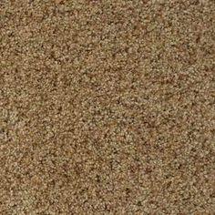 MODERN MOMENT III NATURE WALK Texture TruSoft® Carpet - STAINMASTER®