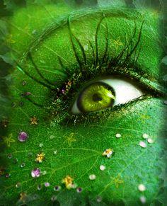 Spring eye!