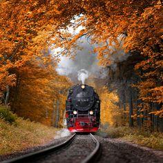 Autumn Journey by Alexander Riek