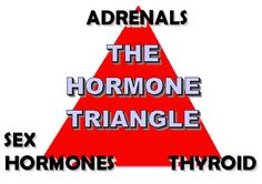 A Naturopathic View on Thyroid and Hormone Balance: A key to good health is balance in three key hormone areas.