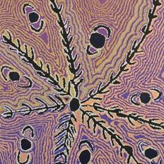 Wakirlpirri Jukurrpa (Dogwood Tree Dreaming) by Liddy Napanangka Walker