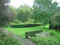 DSCN4290 Mien Ruys Zicht op Taxus  baccata bij Gele tuin vanuit Hoektuin