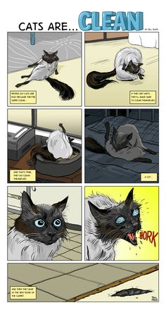 Bill Main - Cats are clean... #cats #funny #comic #hairball
