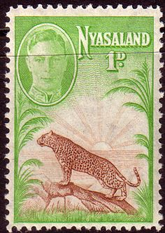 Nyasaland 1947 SG 160 Leopard Used Scott 84 Other Nyasaland Stamps HERE